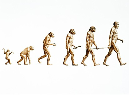 evolution_080103_ms